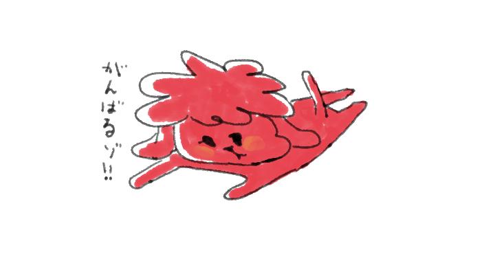 トイプードル