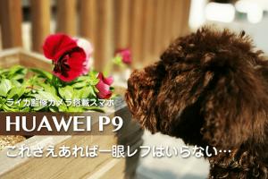 HUAWEI-P9作例