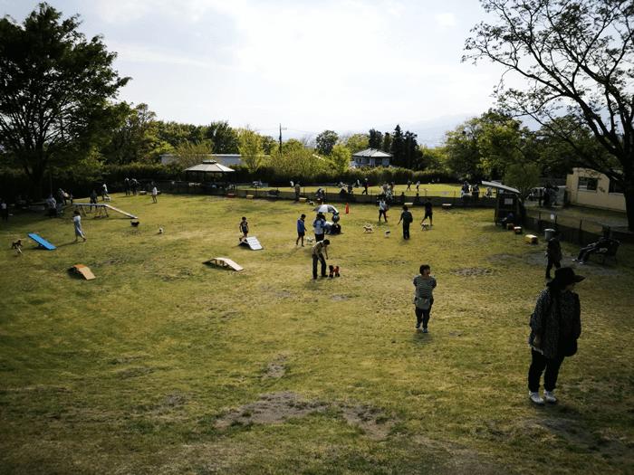 世界の名犬牧場ドッグラン02