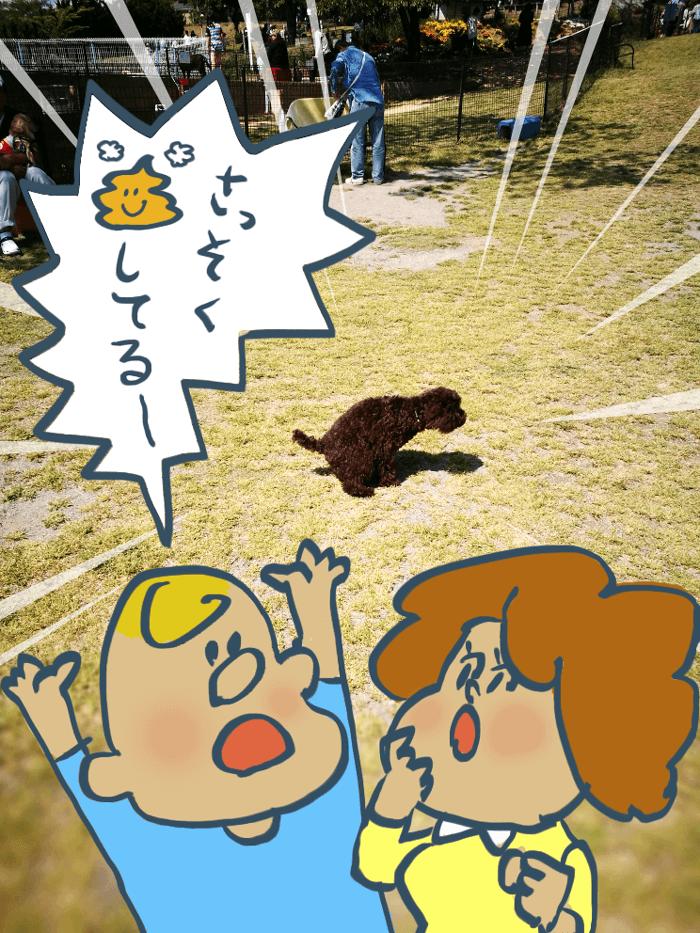 世界の名犬牧場マンガ004